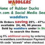 Graduation Rubber Duck Savings Bank, Waddlers Brand, Authentic Designed to Promote Children Saving Piggy Bank in Rubber Duck Form, Gift School Kids All Ages