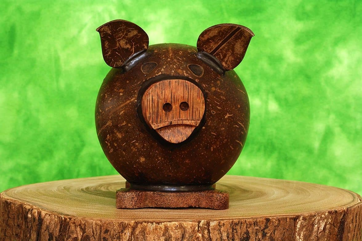 Unique Handmade Coconut Shell Wood Pig Coin Piggy Bank Handcrafted