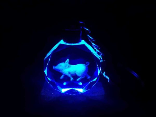 Circle Circle 3D Laser Engraved LED Light Keychain 7 Colors